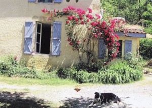Ферма во франции